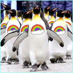 penguin gay singles The official uk singles chart and the official uk album chart.