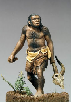 The biologists decoded the Neanderthal genome last year, where they at first reported no significant evidence of interbreeding.