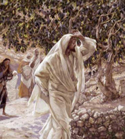 catholic singles in samaria Samaria was considered as not belonging to the holy land,  jesus and the samaritan woman christiancouriercom access date: august 22, 2018 https:.