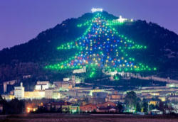 The largest Christmas tree in the world found at Gubbio, Italy