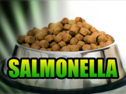Due to handling tainted dog food, at least 14 people have fallen ill of salmonella.