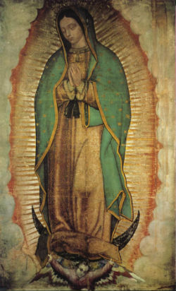 Our Lady of Guadalupe on the tilma of Juan Diego.
