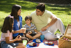A family picnic is a fun way to spend a day, or just an afternoon outdoors.