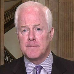 Senator John Cornyn (R-Texas) accused Holder was 'using the Department of Justice as the political arm of the Obama campaign' and blasted Holder's opposition to state voter ID laws as 'ridiculous.'