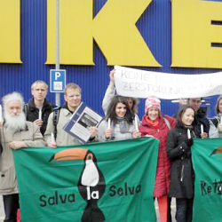 Environmental non-governmental organizations held protests outside eight IKEA stores in Sweden in April to raise awareness.