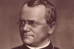Gregor Mendel, an Augustinian friar regarded as the father of modern genetics.