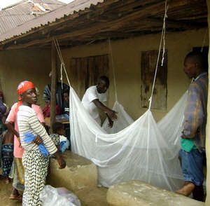 Insecticide-treated bed nets are a vital weapon in the global fight against malaria. The disease is borne by parasite-carrying mosquitoes and kills more than 650,000 people a year, according to the World Health Organization.
