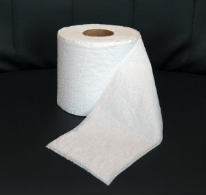 Toilet paper and redemption, more in common than previously thought for university officials.