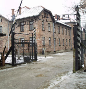 Auschwitz was the largest and most famous of the Nazi concentration camps, but a new study says it was just one of a total of 980 across Europe.