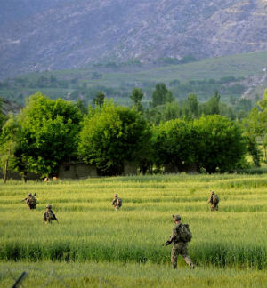 U.S. troops comb through some farmland near Kabul in an attempt to weed out Taliban members.