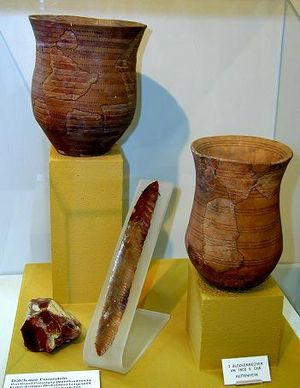 Beaker folk lived about 4,500 years ago in the temperate zones of Europe. Their name derives from their distinctive bell-shaped beakers, decorated in horizontal zones by finely toothed stamps.