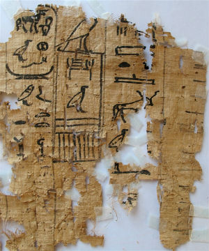 One papyrus is said to detail the daily activities of an official named Merrer, who was involved in building the Great Pyramid.