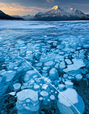 Regardless, the methane from the floor of Abraham Lake creates an astonishing visual as the bubbles wind and churn in their slow, eventual struggle to escape the blue lake.