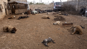 Farm animals that died where they stood, are evidence that chemical weapons have been used in Syria.