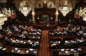 Illinois state House did not vote on the marriage redefinition bill