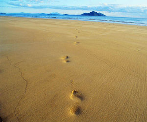 Footprints through the Sand