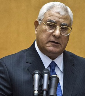 Adly Mansour, the interim president of Egypt