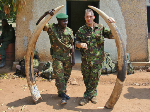 Enforcement officials pose with seized ivory.
