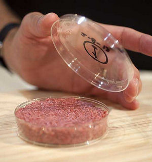 Scientists have artificially grown a hamburger in an attempt to keep apace with the world's growing demand for meat. The 'Franken-burger' will be unveiled and eaten at a press conference.
