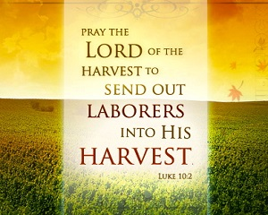 The resources needed for this harvest have already been prepared by the Holy Spirit. With the eyes of living faith we can see them being assembled