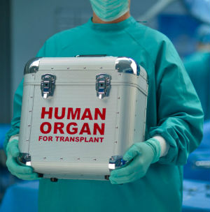The transplantation of human organs always carries a high amount of risk. Available organs from donors must be quickly identified, and technicians must race the organs to patients at hospitals many miles away.