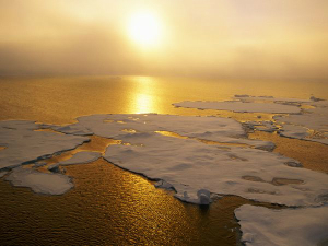 The loss of sea ice was cited as an immediate threat, but how does that threaten humanity?