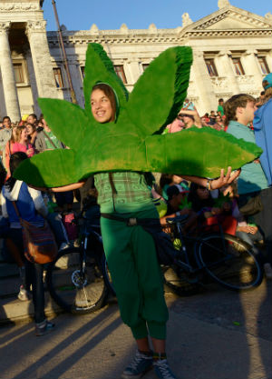 Hailed as a huge victory for the nation marijuana smoking community, hundreds of young people gathered outside Congress in Montevideo to follow the vote on a giant screen.