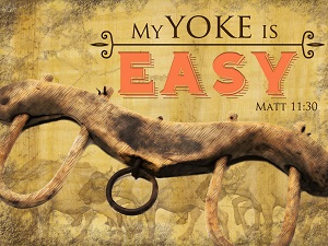 A Yoke. We are now yoked to the Lord, and, in Him, with one another.