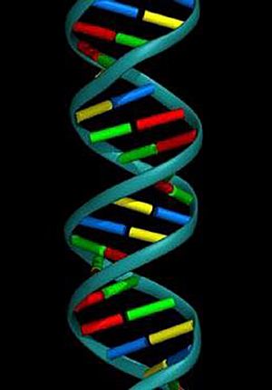Genetic engineering is contrary to the Word of God. The church should both stand against, and pray against this evil.