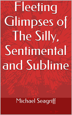 Download your copy of the free Kindle e-book 'Fleeting Glimpses of the Silly, Sentimental and Sublime' by Michael Seagriff O.P. on January 28th to January 30th.