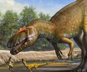 An imposing thunder lizard, the torvosaurus gurneyi was bipedal, weighed 2.5 to 3.6 tons.