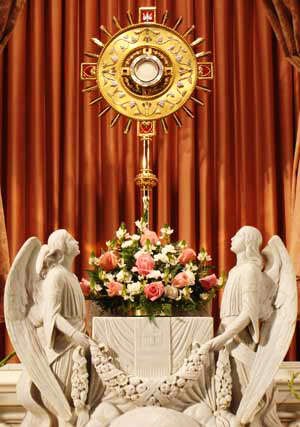 Jesus waits for us in this sacrament of love.