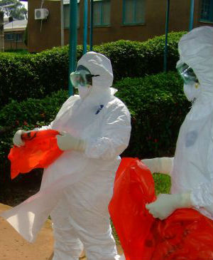 Using analysis of blood samples from infected patients, researchers determined that while the Guinean form of the Ebola virus (EBOV) showed a 97 percent similarity to the Zaire strain, the disease was not introduced from Central Africa.
