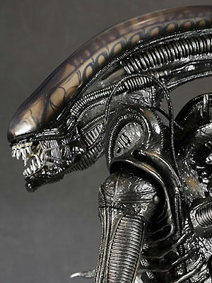 According to Stephen Hawking, us earthlings shouldn't go in search of intelligent life in space - they're more than likely to eat us than come in peace. In related news, the Swiss artist who created the 'Alien' monster seen in the successful movie series, H.R. Giger died from his injuries in a fall this month at the age of 72.