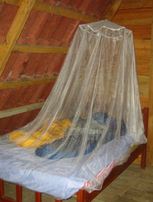 There is hope: For the past 12 years new cases of malaria have fallen by 25 percent, and deaths by 42 percent thanks to better diagnosis, pesticides and the use of bed nets.