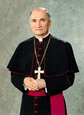 'The committee's observations are 'an acknowledgement of the good faith efforts of the Holy See to comply (with) always and to advance the Convention Against Torture,' Archbishop Silvano Tomasi, the apostolic nuncio leading the Holy See's permanent observer mission to the United Nations in Geneva, says.