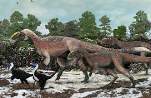 Most dinosaurs may have had feathers, a new study suggests.