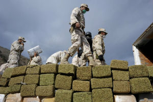 Mexican soldiers with hundreds of bricks of marijuana, which is about to be burned.
