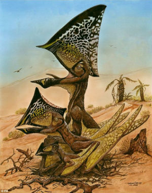 What separates the latest find from others of their species is that the pterosaur Caiuajara dobruskii had a large bony crest on the top of its head that changed from being small when it was young, to large and steep in adults.