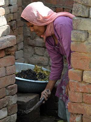 India's cast system has led to a select class of women called 'night soil gatherers,' women who gather feces from non-flush toilets.