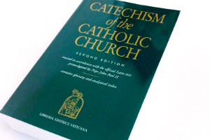 A complete library of books for catechists should feature the USCCB's full collection.