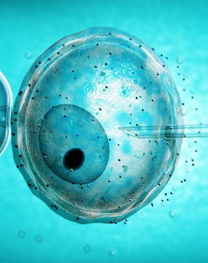 ALTERING EMBRYOS: China becoming 'Wild West' in genetic research