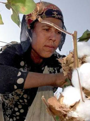 One million people forced to harvest Uzbek cotton last year