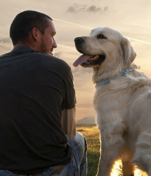 Have dogs always been man's best friend?