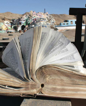 Bible found open in Texas tornado debris -- The message it read changed lives forever