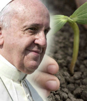Pope's Encyclical: No one can respect nature while supporting abortion, or be pro-life by damaging environment