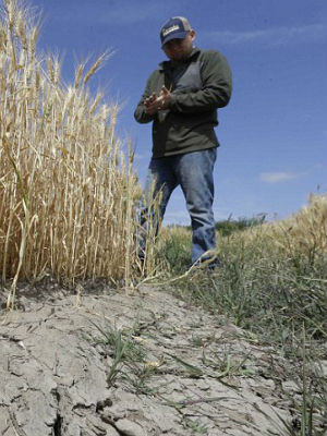 Will El Nino bring relief to drought-stricken California?