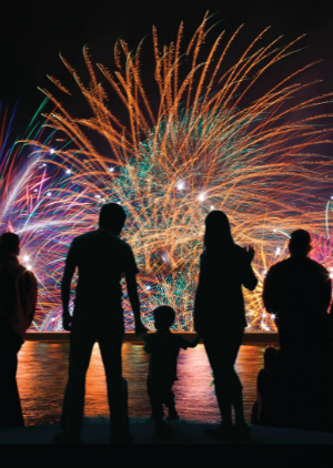 'Enough with all the rules' firework industry calls out to Obama
