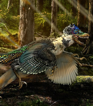 Unusual, new winged dinosaur fossil unearthed in China