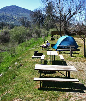 HEALTH ALERT: Human plague case shuts down Yosemite campground